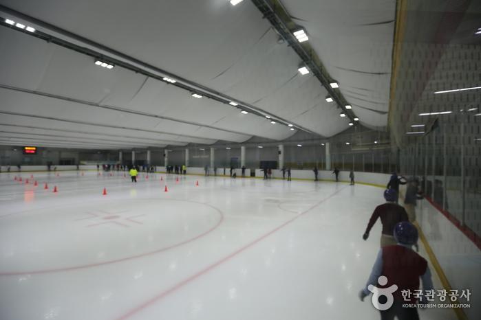 Mokdong Ice Rink (Indoor) (목동아이스링크(실내))