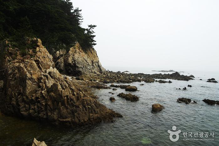 해변기암절벽