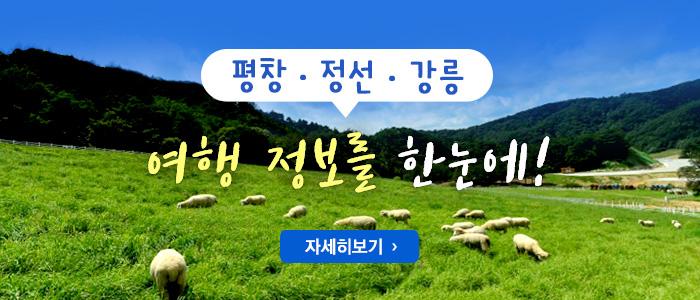 평창·정선·강릉 여행정보를 한눈에! 자세히보기