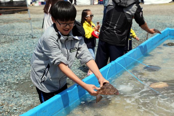 舒川自然産ヒラメタイ祭り(서천 자연산 광어 도미 축제)