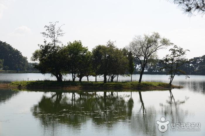 의림지의 인공섬인 순주섬