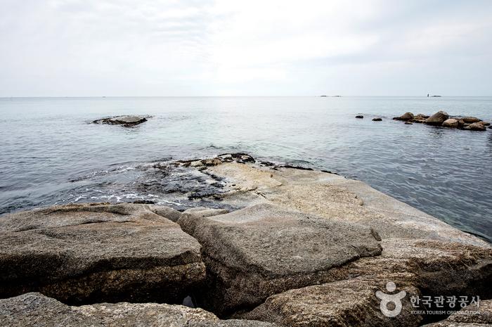 강릉 사근진해변