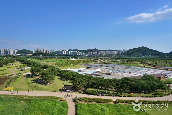 Экологический парк Кэтколь в Сихыне (시흥 갯골생태공원)5