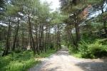 조령산자연휴양림