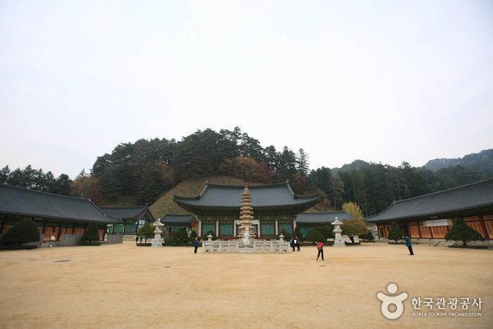 Programme de Temple Stay à Woljeongsa (월...