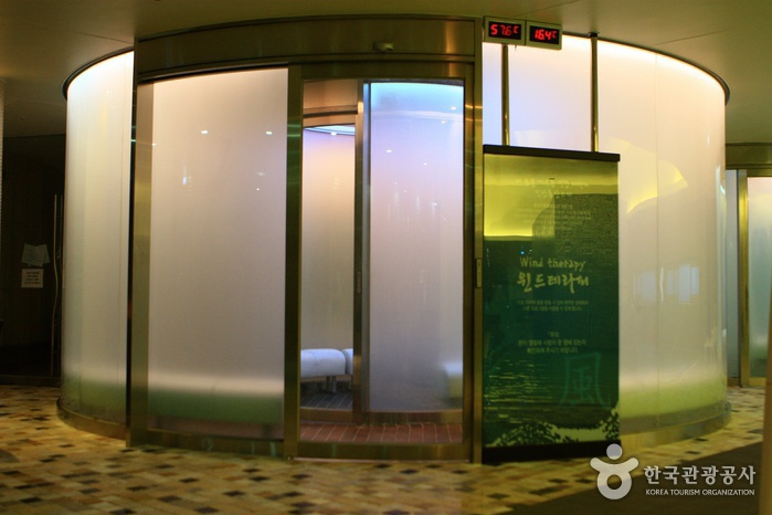 Jinan Red Ginseng Spa (진안홍삼스파)