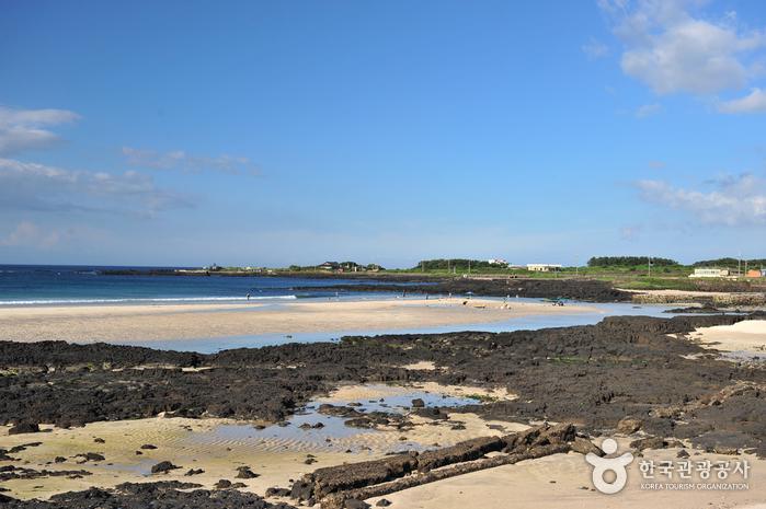 Sehwa Beach (세화해변)