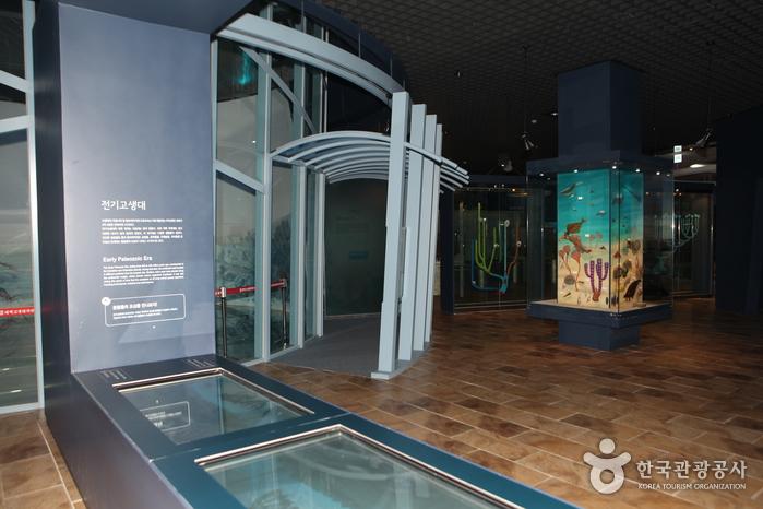 태백 고생대박물관