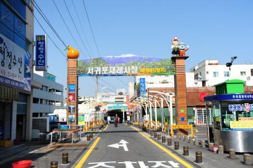 Seogwipo Olle Market...