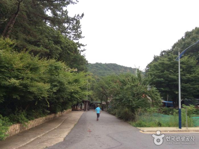 구봉산(대전)