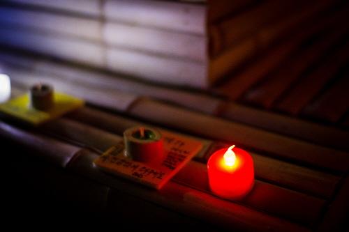 潭陽竹祭り(담양대나무축제)