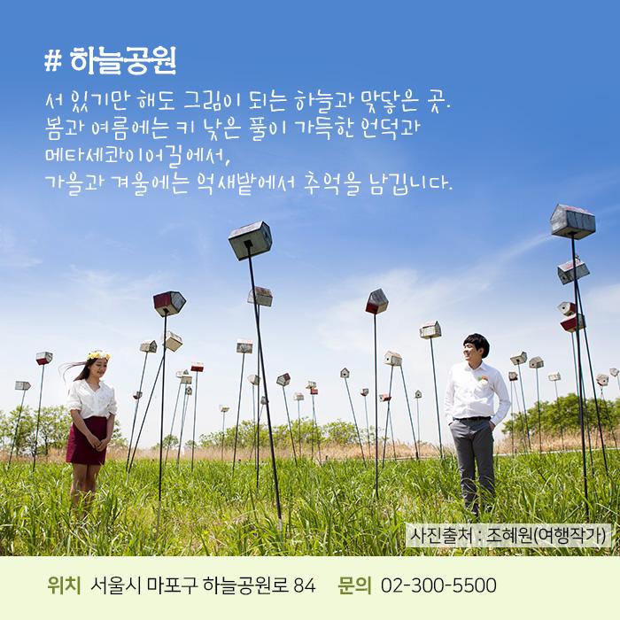 하늘공원. 서 있기만 해도 그림이 되는 하늘과 맞닿은 곳. 봄과 여름에는 키 낮은 풀이 가득한 언덕과 메타세콰이어길에서, 가을과 겨울에는 억새밭에서 추억을 남깁니다. 사진출처 – 조혜원(여행작가) 위치 : 서울시 마포구 하늘공원로 84 문의 : 02-300-5500