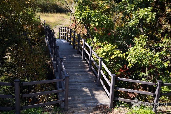 구라이골 (한탄강 국가지질공원)