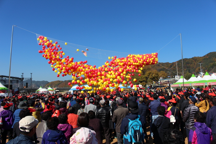 Cheongsong Apple Festival (청송사과축제)
