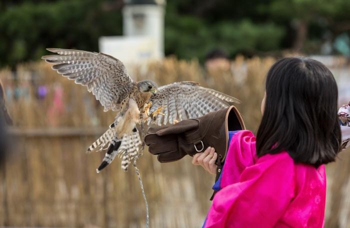 Фестиваль культуры эпохи Хансон Пэкче (온택트 한성백제문화제)