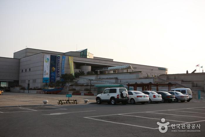 Национальный морской музей (국립해양문화재연구소)4