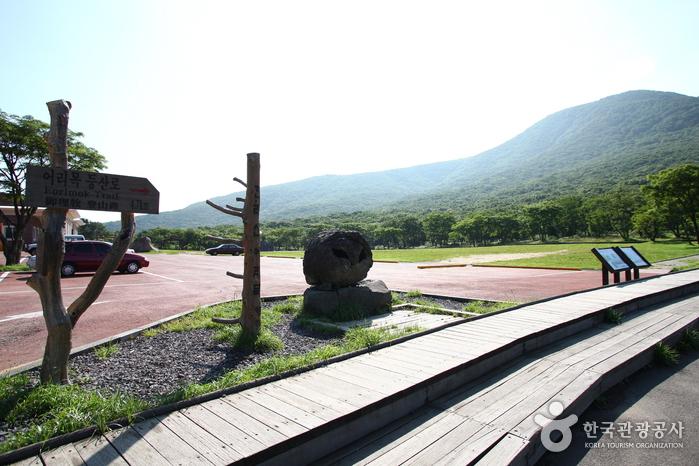 Hallasan National Park [UNESCO World Heritage] (한라산국립공원 [유네스코 세계자연유산])