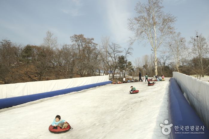 Korean Children's Center Snow Sledding Field (어린이회관 눈썰매장)