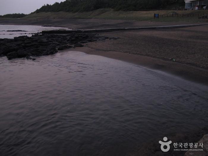 Yongmeori Beach (용머리해안)