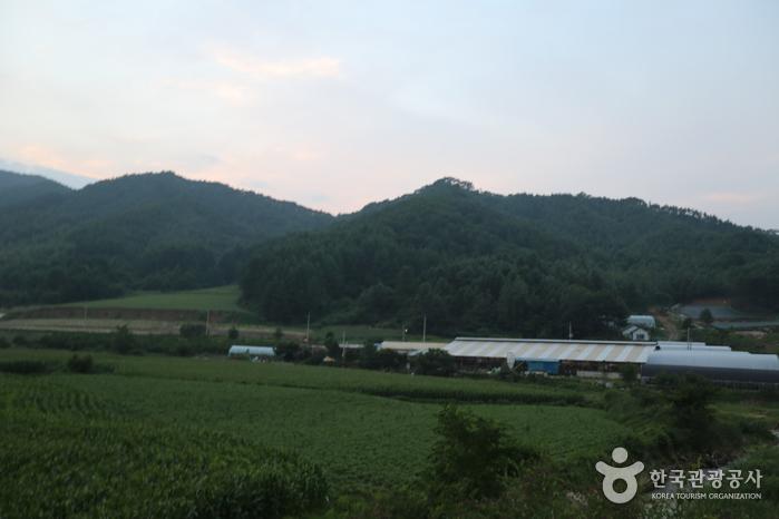 백덕산(영월)