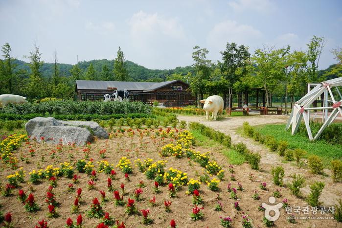 Тематический парк Ontrepieum в Андоне (안동 온뜨레피움)13