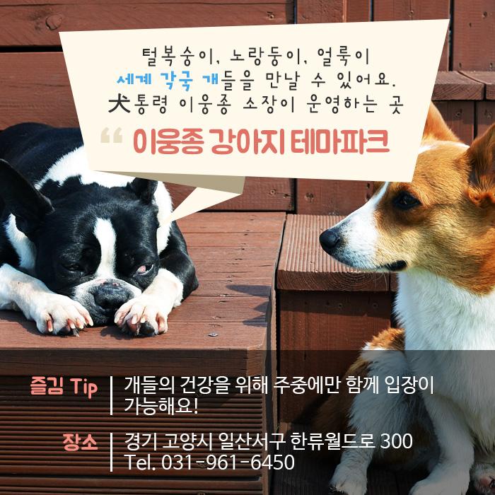 이웅종 강아지 테마파크
