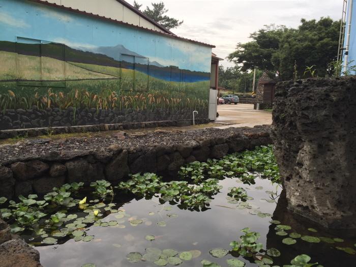 제주샘주 공장 사진3