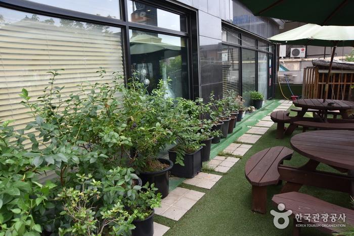 INJE HOTEL [Korea Quality] / 인제호텔 [한국관광 품질인증]