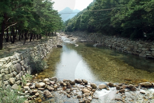 Songgye Valley (송계계곡)