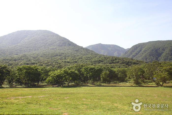 漢拏山トレッキング(한라산 트레킹)