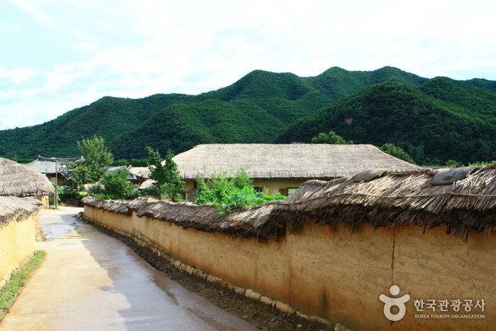 Andong Hahoe Village [UNESCO World Heritage] (안동 하회마을)