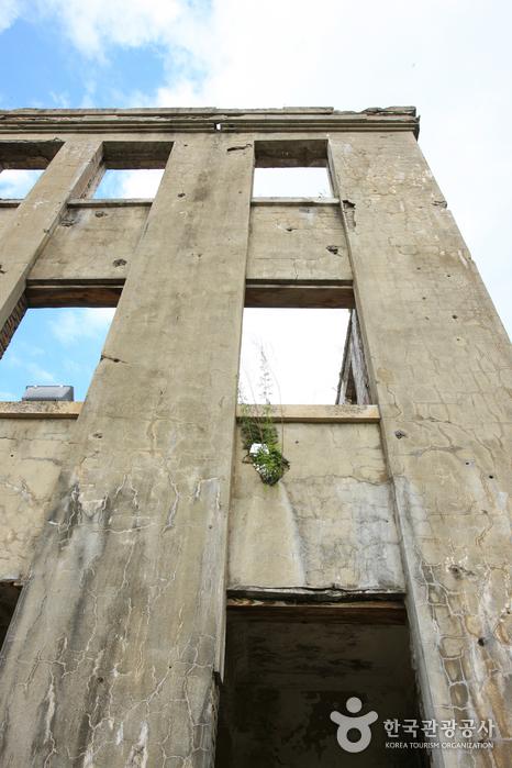Здание Рабочей партии в Чхорвоне (노동당사)7