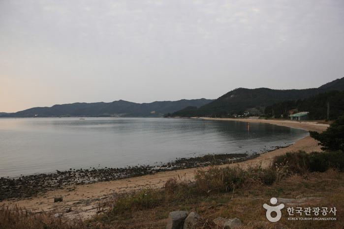 사구미해변