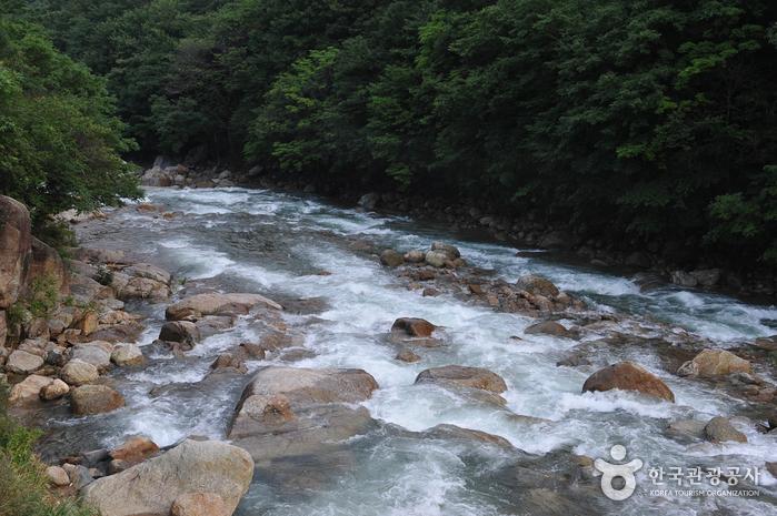 Baegunsan Donggok Valley (백운산 동곡계곡)