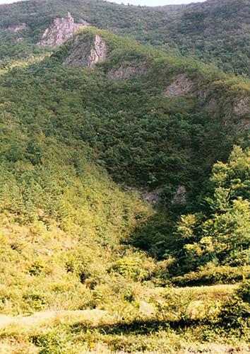 観音窟(三陟 大耳里洞窟地帯)(관음굴(삼척 대이리 동굴지대))