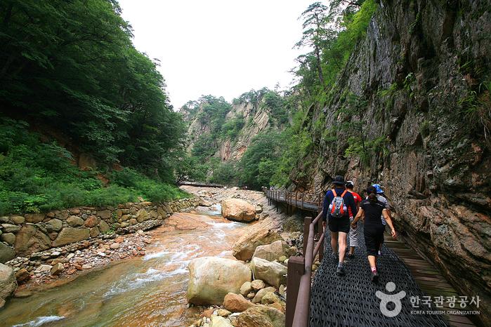 Osaek Jujeongol Valley (오색주전골)