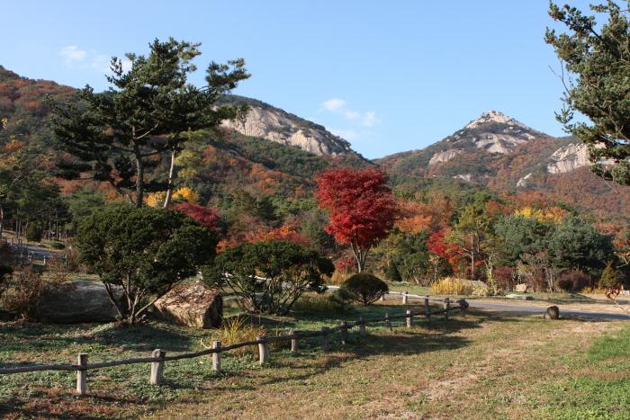 산들소리수목원 사진13