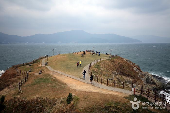 風の丘(바람의 언덕)