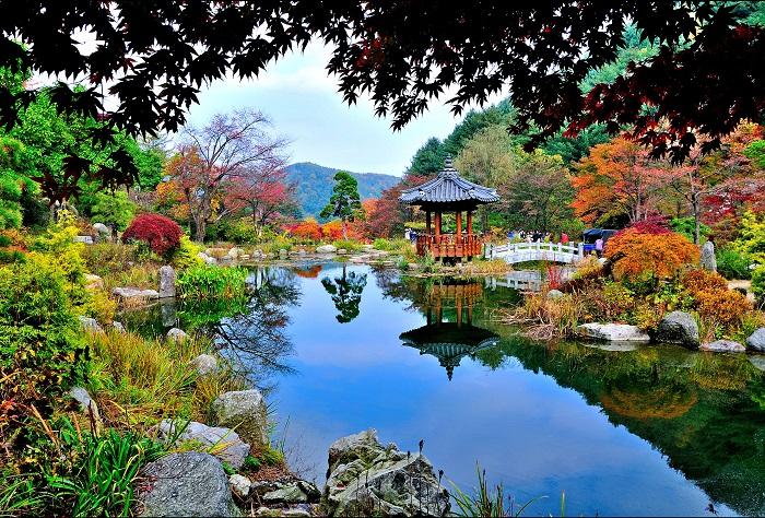 Gapyeong City Tour 2