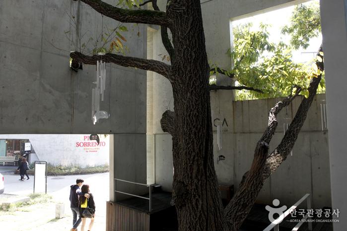 블루메 미술관
