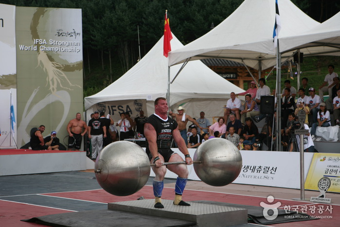 Geumsan Insam (Ginseng) Festival (금산인삼축제)