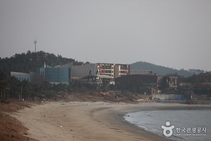 Эко-центр прибрежных районов Синан,