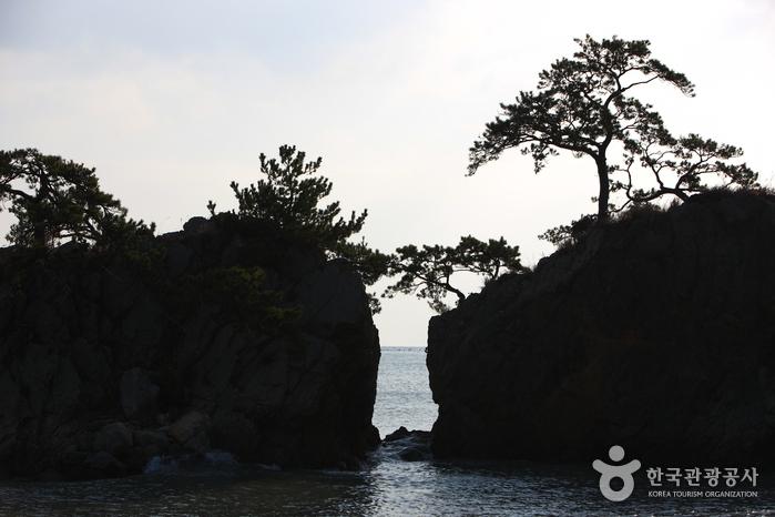 갈두마을(땅끝마을)  사진15