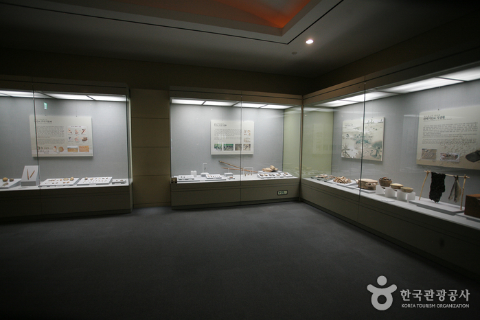 Busan Museum (부산박물관)