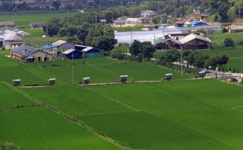 전북 임실치즈마을 사진9