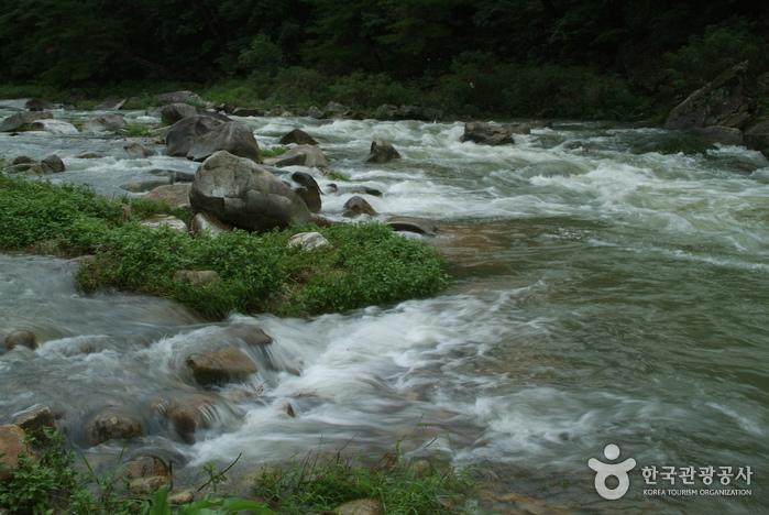 Seokcheon Valley (석천계곡)