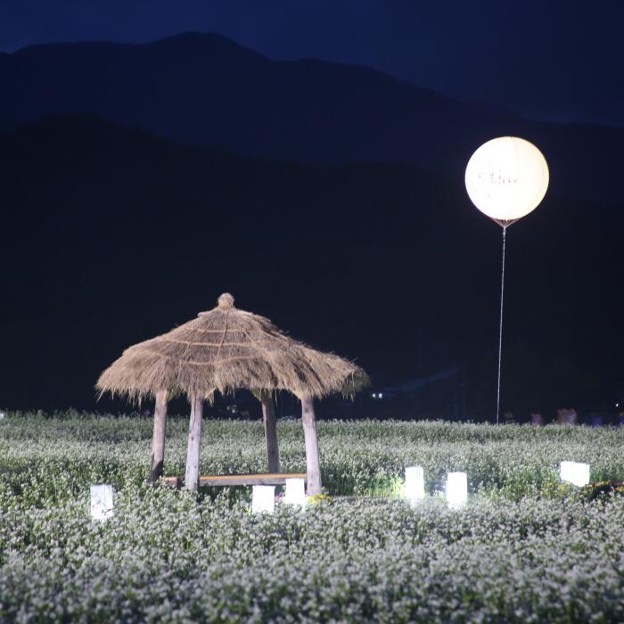 Культурный фестиваль имени писателя Ли Хё Сока в Пхёнчхане (평창효석문화제)37