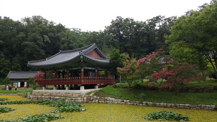 仏影寺(蔚珍)(불영사(울진))