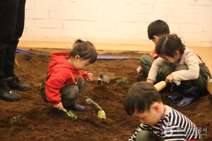 농부체험 - 아이들이 작은 삽으로 씨앗을 심고 있다.