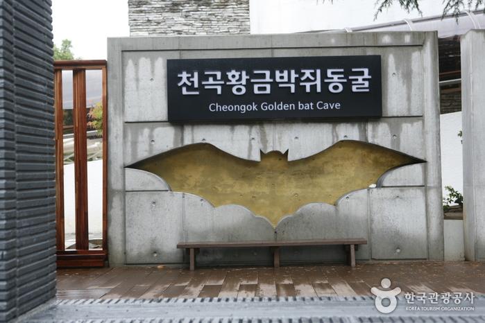 천곡황금박쥐동굴